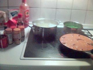 http://sallhibernia.free.fr/darkhawk/Cooking1.jpg