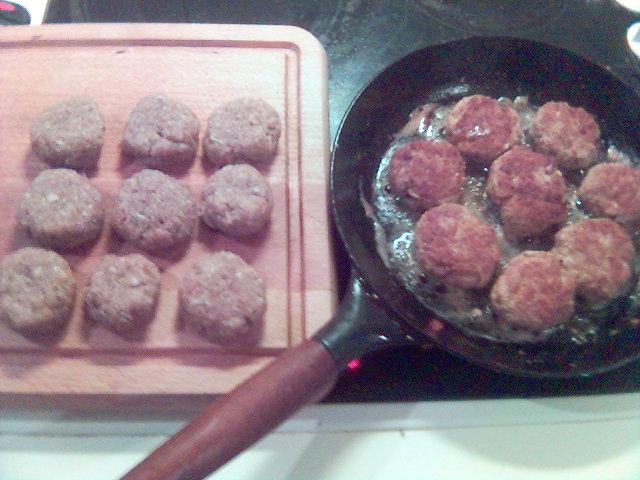 http://sallhibernia.free.fr/darkhawk/meatball/Meatballs2.jpg